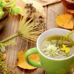 Σεμινάριο εξ' αποστάσεως: Αποτοξίνωση του οργανισμού και βότανα